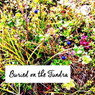 Buried on the Tundra