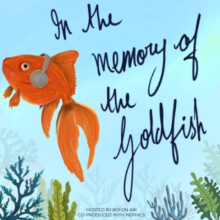 In the Memory of the Goldfish