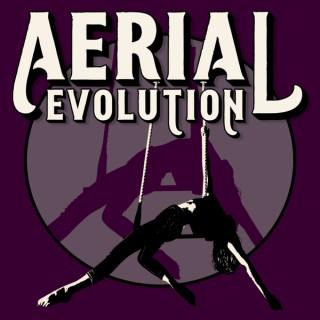 Aerial Evolution