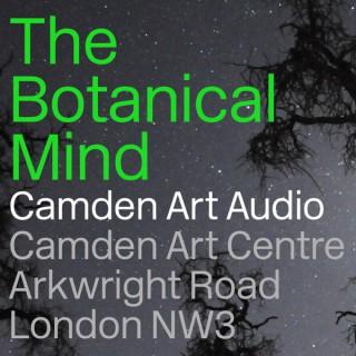 Camden Art Audio