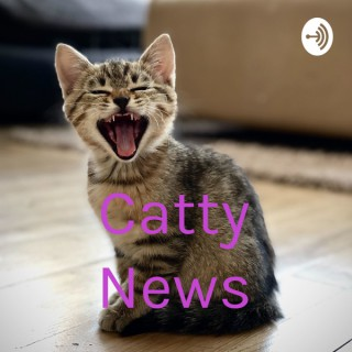 Catty News