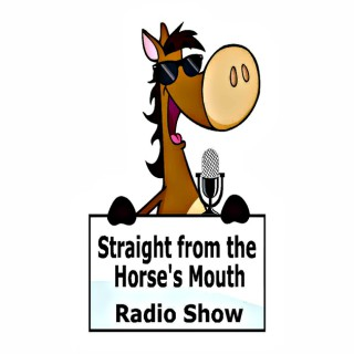 Straight From the Horse's Mouth Radio Show|Horse Radio|Horse Podcast|Creative Equestrians|Equestrian Mindset Coaches|Equine A