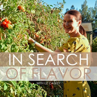 In Search of Flavor