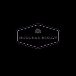 Success Bully