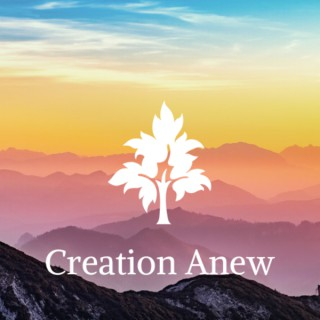Creation Anew
