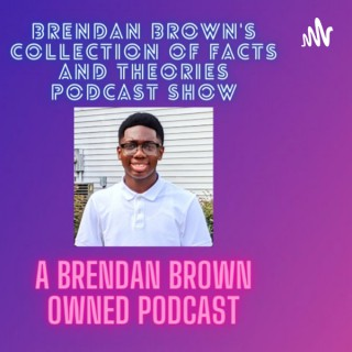 Brendan Brown's Collection Of Facts And Theories