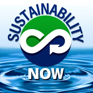 Sustainability Now - exploring technologies and paradigms to shape a world that works