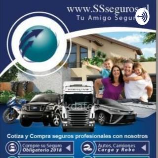 SSSEGUROS LOS MEJORES SEGUROS DE CHILE