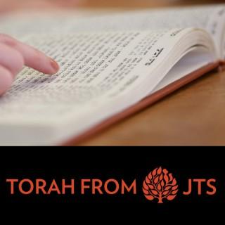 JTS Torah Commentary