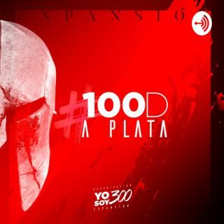 #100D A PLATA YS300EXPANSIÓN