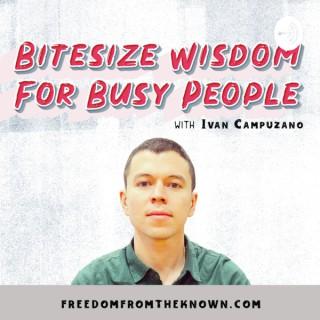 Bitesize Wisdom For Busy People