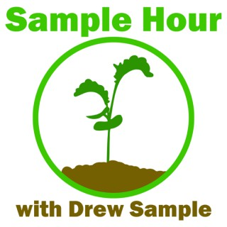 The Sample Hour