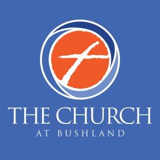 The Church At Bushland