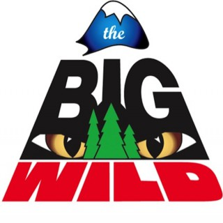The Big Wild, Celebrating 17 Years on Air