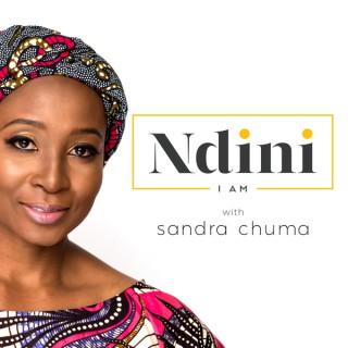 The NDINI Podcast
