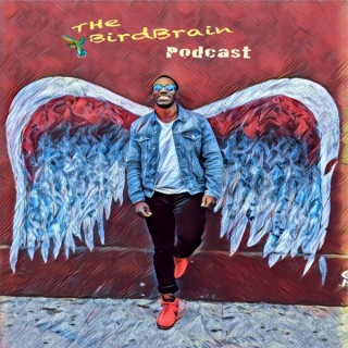 The Bird Brain Podcast