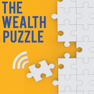 The Wealth Puzzle
