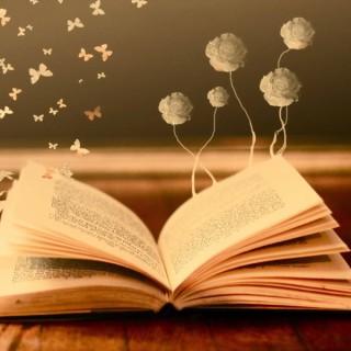 Kitap Okumaları