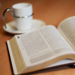 La Bible en 1 an par la Mission Timothée