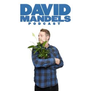 David Mandels Podcast