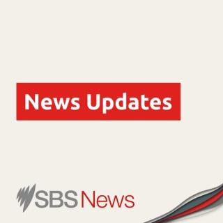 SBS News Updates