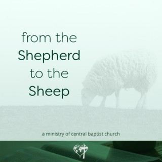 From the Shepherd to the Sheep, Daily Devotionals