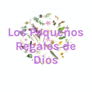 Los Pequeños Regalos de Dios