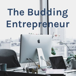 The Budding Entrepreneur