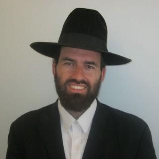 TO TORAH - Rabbi Steinhauers shiurim
