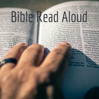 Bible Read Aloud