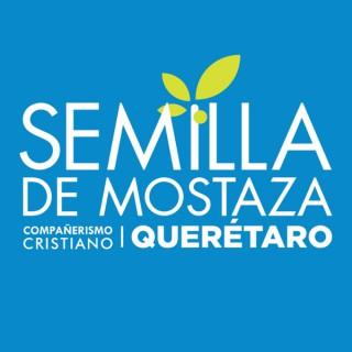Semilla de Mostaza Querétaro