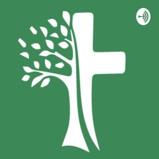 Prédicas Iglesia Cristiana El Milagro
