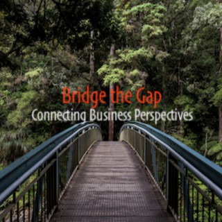 Bridge the Gap Podcast  Connecting Business Perspectives