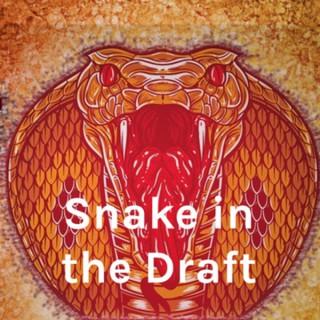 Snake in the Draft- Fantasy Football Podcast