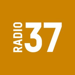 RADIO37 - Das Bornholm-Magazin