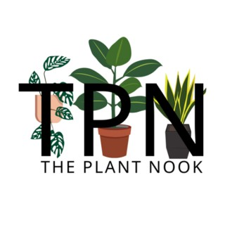 The Plant Nook