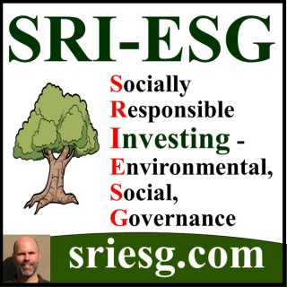 Values Investors Podcast | Socially Responsible Investing, ESG, Ethical, Impact, Sustainable Investments