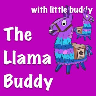 Fortnite with The Llama Buddy