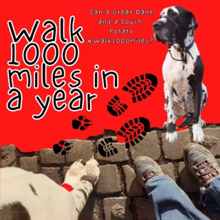 Walk 1000 miles a Year; Can a Great Dane and a Couch Potato #walk1000miles 2021?