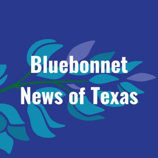 Bluebonnet News of Texas