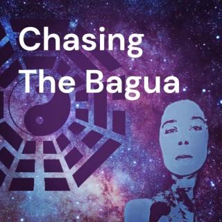 Chasing The Bagua