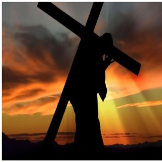 Pick Up Your Cross | Bible Studies
