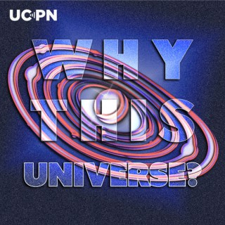 Why This Universe?