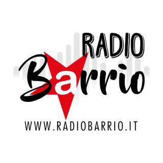 Radio Barrio on Spotify