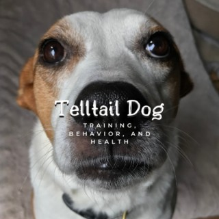 Telltail Dog