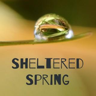 Sheltered Spring