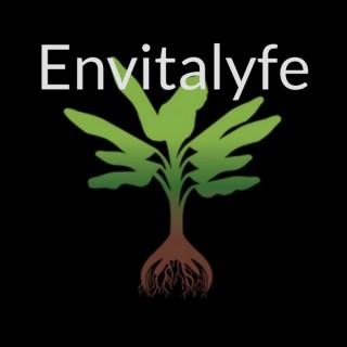 Envitalyfe | Environmental