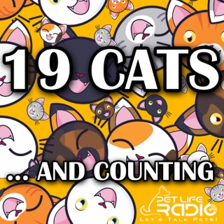 19 Cats and Counting on Pet Life Radio (PetLifeRadio.com)