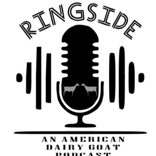 Ringside: An American Dairy Goat Podcast