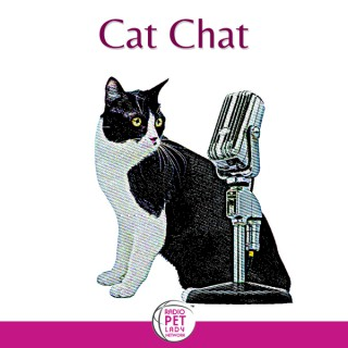 Cat Chat®